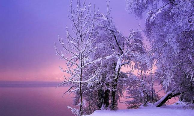 paysages enneigés
