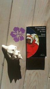 psychanalyse des contes de fees2037814374..jpg