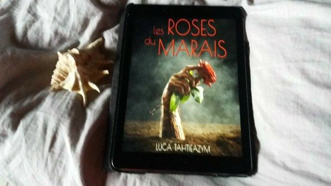 les roses du marais894291876..jpg