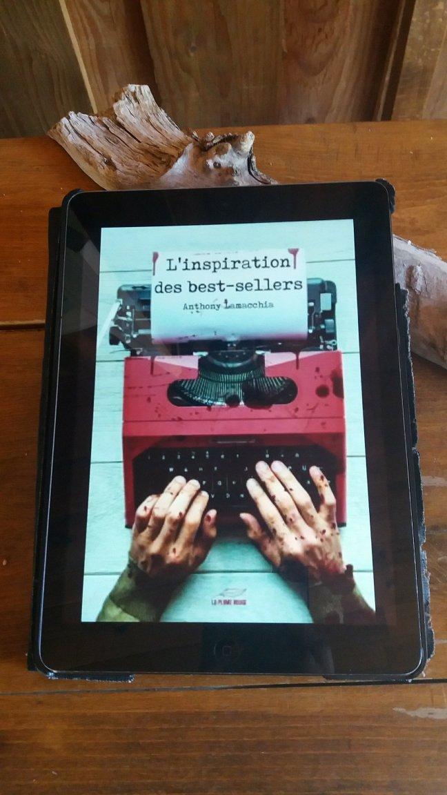 l inspiration des best sellers478225342..jpg