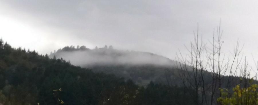 il-etait-une-fois-dans-le-brouillard346834423..jpg