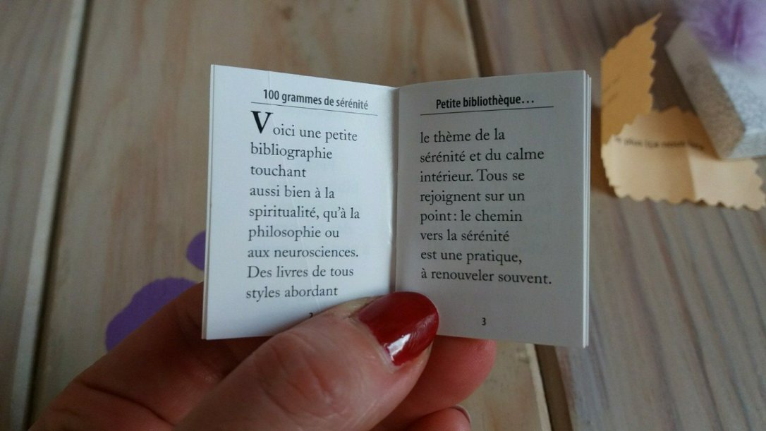 sonia boulimique des livres-11887544529..jpg