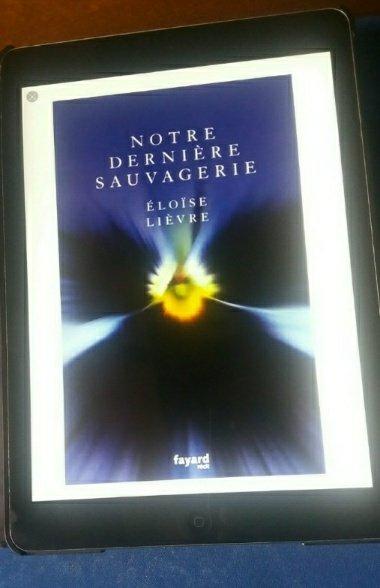 blog litteraire-21901385285..jpg