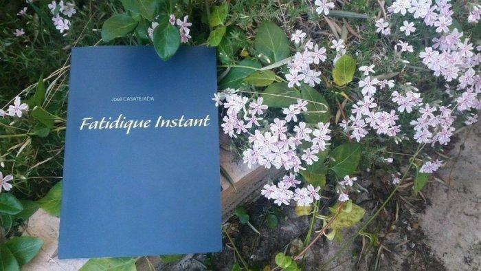 fatidique  instant1237410044..jpg