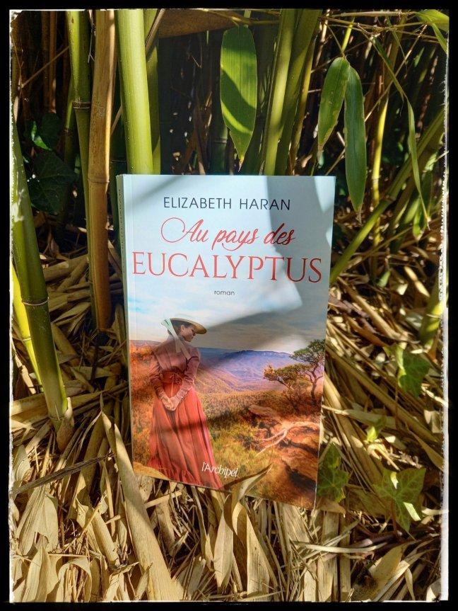au pays des eucalyptus3176356540052666848..jpg